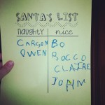Naughty:Nice List Bo